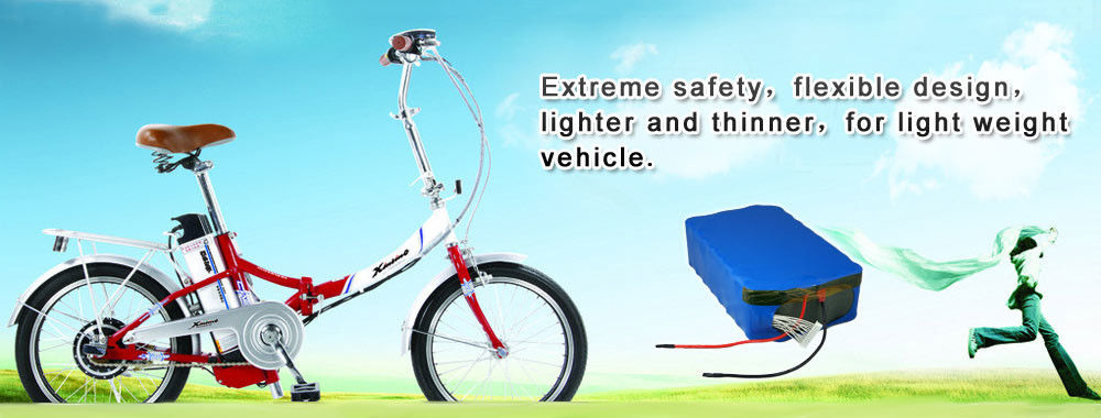 China best Electric Bike Battery Pack on sales